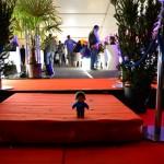 tapis rouge... :D  (festival du Roi Arthur 2014)