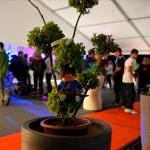 espace VIP (festival du Roi Arthur 2014)
