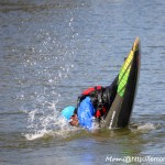 Leçon de plongeon en canard! ^^ (05/04/15, Port de Vannes)