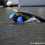 Tortue en opé camouflage? (05/04/15, Port de Vannes)