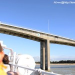 (le pont de Fromentine)