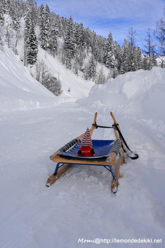 La neige en Suisse, Février 2015