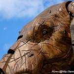 La lune vs l'oeil de l'éléphant (le Voyage à Nantes, aout 2015)
