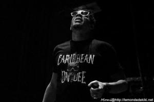 Caribbean Dandee (Festival du Roi Arthur 2016, Bréal-sous-Montfort)